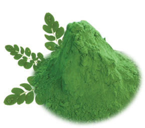 Moringa Magical Powder